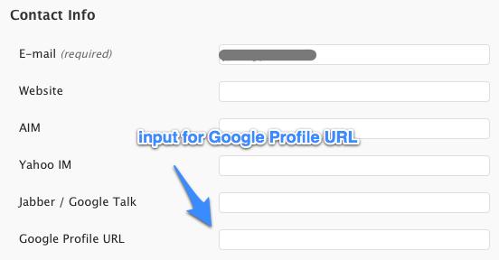 Google Profile URL input field