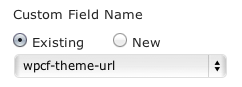 Name custom field