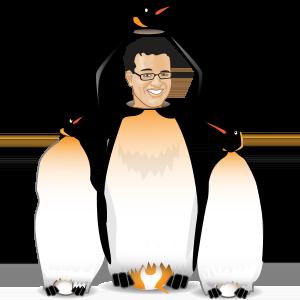 Yoast playing Google's Penguin