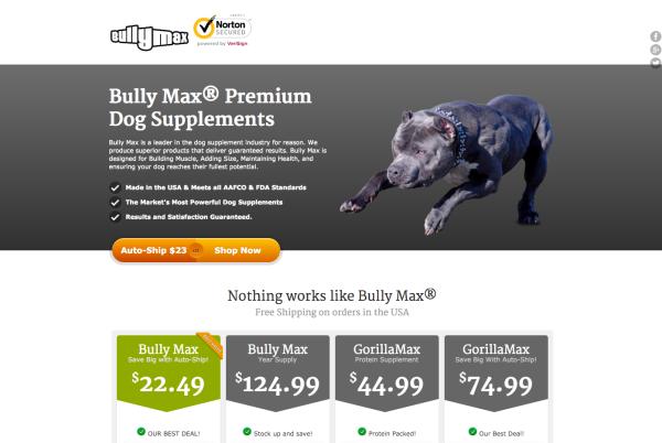 vitaminsforpitbulls.com design (April 2014)
