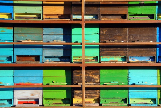 Colorful Apiary