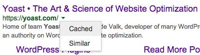 yoast com Google Search