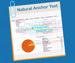 Focus on natural anchor text