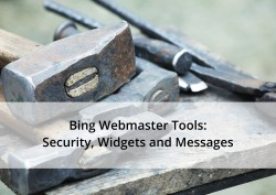 Bing Webmaster Tools: Security, Widgets and Messages