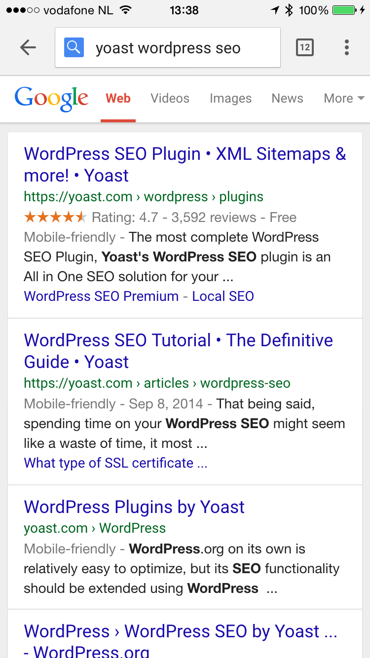 Mobile search result with domain name