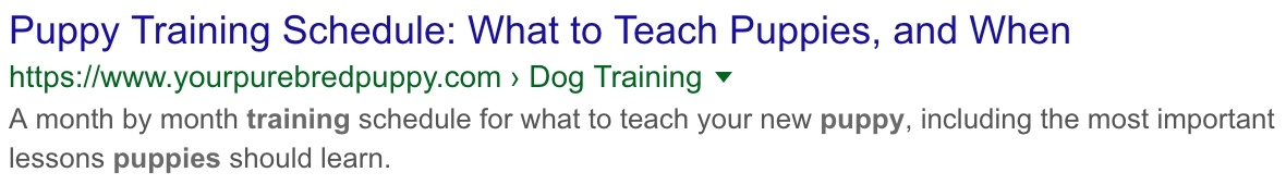 puppy training example meta description right length