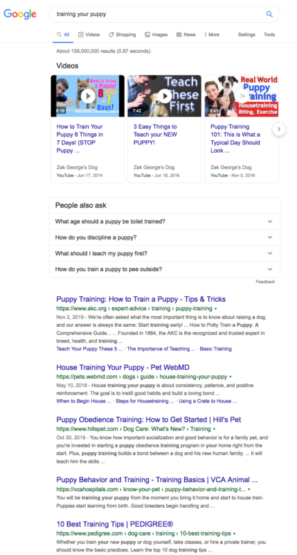 search results for 'training your puppy'