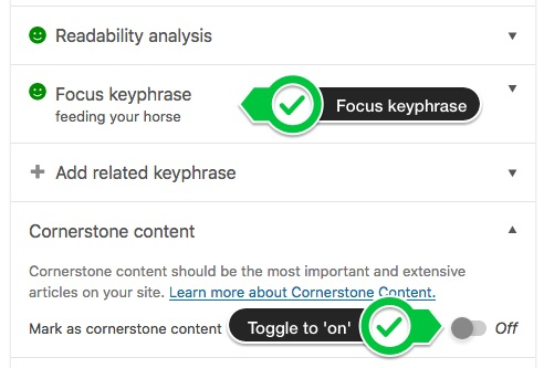 Adding the focus keyphrase and marking as cornerstone content in Yoast SEO