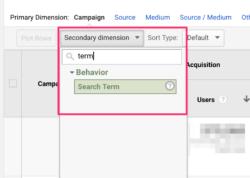 utm_term in Google Analytics