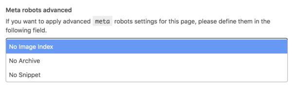 Screenshot showing meta robots settings