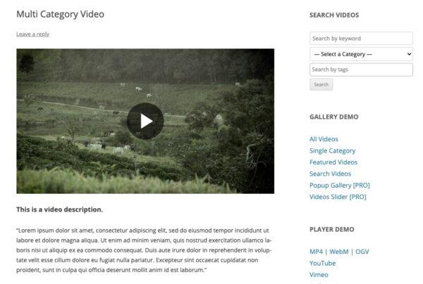 Multi Category Video Plugins360 Demo