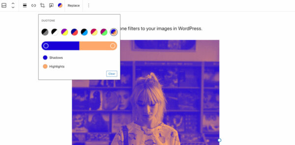 WordPress 5.8: adding a duotone filter to your image